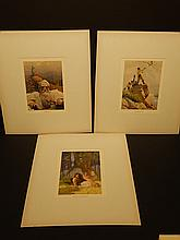 N.C. Wyeth: Three Color Lithographs. Nemo, Wild Man