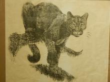 Martha H Cawley: Florida panther, Screenprint, 1974