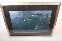 A large bass print showing bass and sandeels in a handmade frame by David M