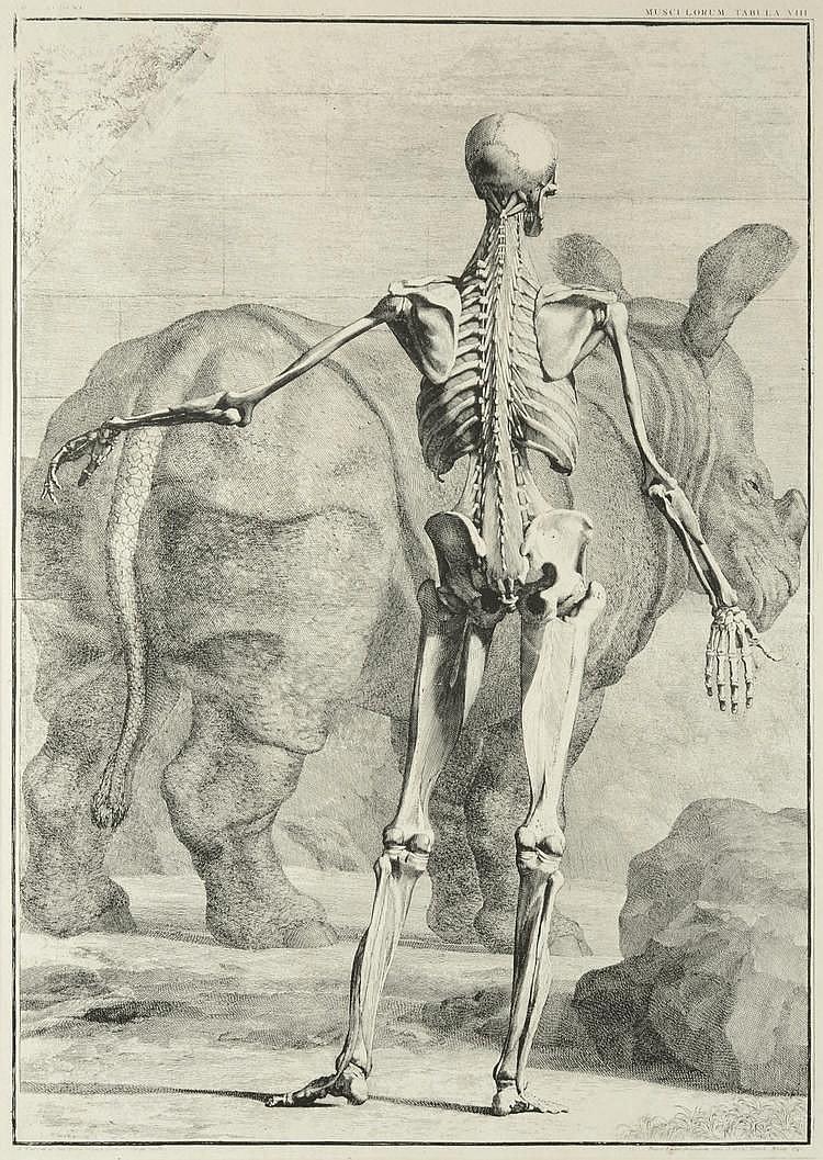 Jan Wandelaar  (1690-1759)
