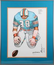 SUPERBOWL VI THE FUMBLE S/N FRAMED DOLPHIN POSTER