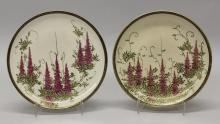 Pair of Satsuma Plates