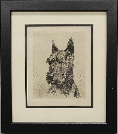 Framed Etching - Scotti Dog by Ossos