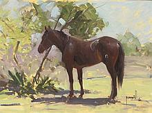 Robert Pummill | The Dark Horse