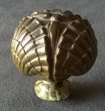 Bronze Scallop Shell Doorknob