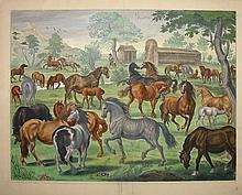 Duke of Newcastle Horse Farm