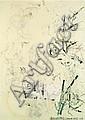Robert RAUSCHENBERG (1925-2008) NONAME-ELEPHANT (FROM FOR MEYER SHAPIRO), 1973 Technique mixte sur papier, embossage, plâtre, relief...