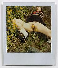 Nobuyoshi ARAKI (Né en 1940) SANS TITRE Polaroïd couleur