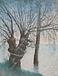 Lucien LEVY DHURMER (Alger, 1865- Le Vésinet, 1953) RIVIERE EN CRUE Pastel sur papier