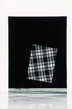 David Dubois - Galerie Kreo  « Sample »