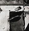 Walker EVANS (1903-1975) Junked cars, Old Lyme, Conneticut, vers 1973-1974 Tirage d'après négatif Polaroïd (type 105)