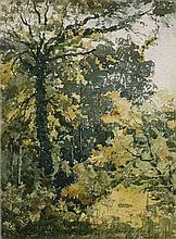 Henri-Joseph Harpignies Valenciennes,1819 - Saint-Privé, 1916 Etude de sous-bois Aquarelle sur trait de plume et encre de Chine