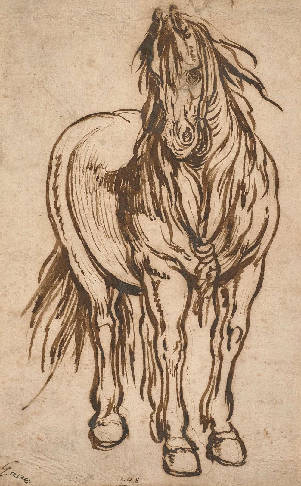 Jacques Callot Nancy, 1592 - 1635 Etude de cheval, de face Plume, pinceau et encre brune sur papier vergé