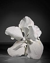 Marc QUINN (Né en 1964) CARELESS DESIRE - 2010 Bronze peint
