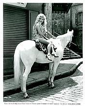 Rare Original Photo Sexy Gina Lollobrigida, 1965