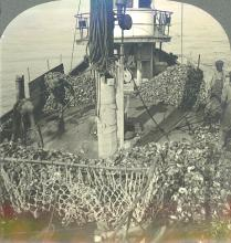 Antique Stereo Photograph - Afro American Oyster Boat