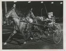 Original Press Silver Photo Old Grandmother Harness Racing Expert, NY 1946