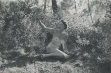 Velox Silver Photography, English Naturalism WWI Post Era, 1930's