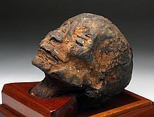 Authentic Egyptian Mummy Head - New Kingdom