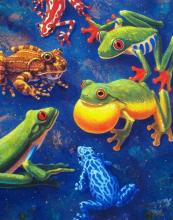 Charles Lynn Bragg 6 Frogs Hand Signed Limited Edition Giclee