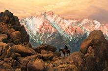 Sierra Morning by Robert Dawson