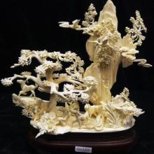 Solid Bone Horses Mountain