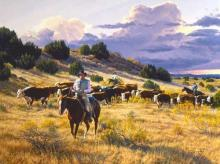 On to Better Pastures by Tim Cox