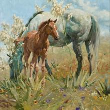 Springtime on the Llano Estacado by Bruce Greene