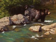 Bearably Cool Water by Dustin Van Wechel