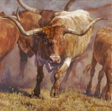 Tex by Ragan Gennusa