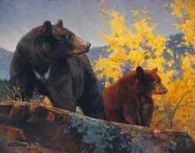 The Cinnamon Bear by Nancy Glazier
