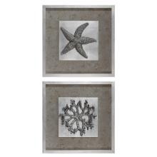 Starfish & Coral Shadow Box Art, S/2
