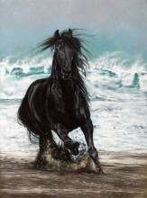 Free Spirit by Lesley Harrison