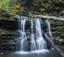 Tim Fitzharris - Seneca Falls, Ricketts Glen State Park, Pennsylvania