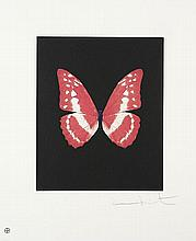 DAMIEN HIRST - Color etching