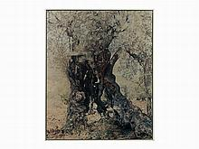 Ori Gerscht, C-Print, Ghost-Olive No. 7, Israel, 2003