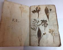 An unusual and rare mid-18th century botany album, containing 44 pages of 2