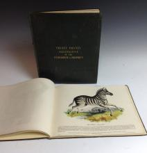 Thirty Plates Illustrative of Natural History, With a Short Description Ann