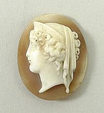 An Italian shell cameo, 19th century, bust portrait of A Roman lady, 23mm long.