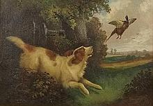 Robert Cleminson (British, fl 1864-1903): Gun dog chasing a pheasant out of a wood, oil on canvas, s