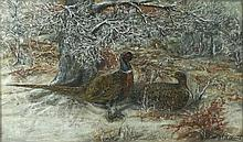 F J Maidment: 'Pheasants in Winter', oil on board, signed lower right, 34 by 55cm.