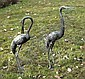 Pair of white metal cranes with green patination,