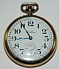 Delton 21 jewel pocket watch