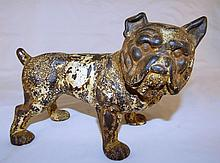 Bull Dog Cast Iron Bank