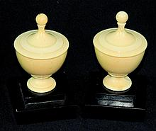 Pair of Ivory Finials