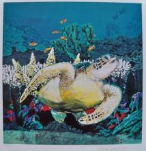 Nicole Stahl Sea Turtle Secrets At Silver Bank Hand Signed Seriograph