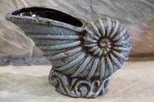 Light Blue Spiral Nautilus Shell
