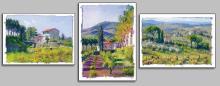 June Carey - Studies Of...dona Di Natura
