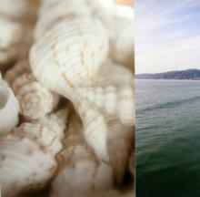 Original-Jennifer Broussard-Oceans 21