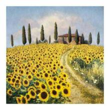 Barbara Carter - Sunflowers I